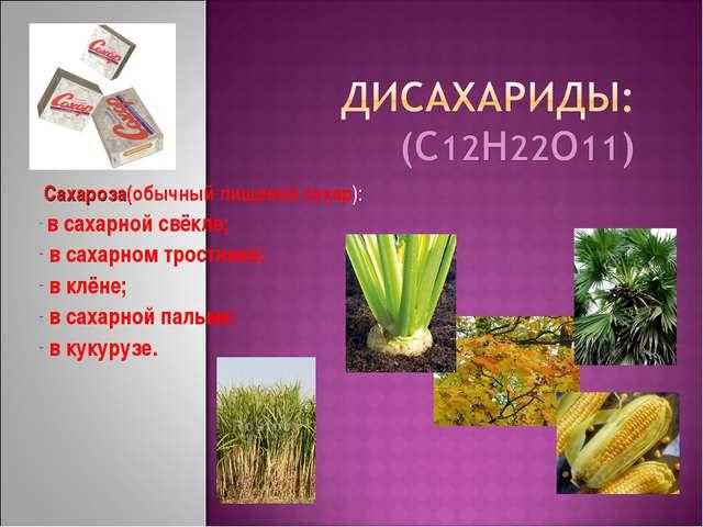 Сахароза(обычный пищевой сахар): в сахарной свёкле; в сахарном тростнике; в...