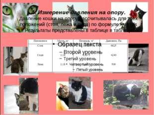 4. Измерение давления на опору. Давление кошки на опору рассчитывалась для тр