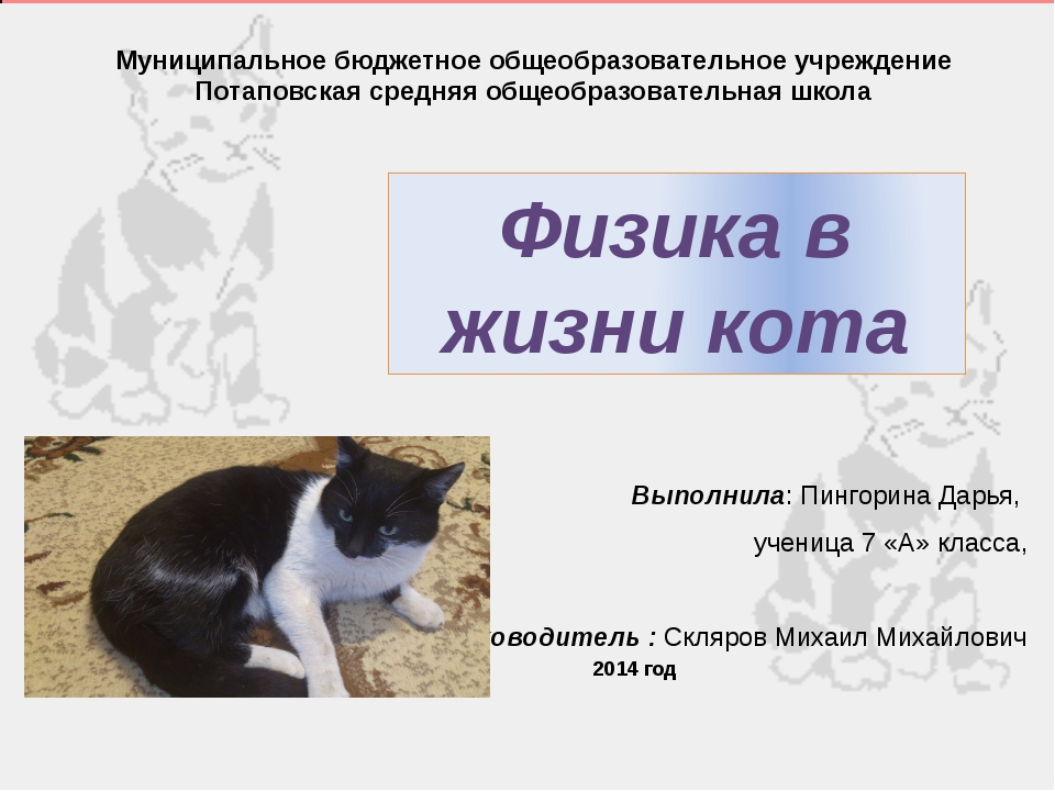 Муниципальное бюджетное общеобразовательное учреждение Потаповская средняя об...