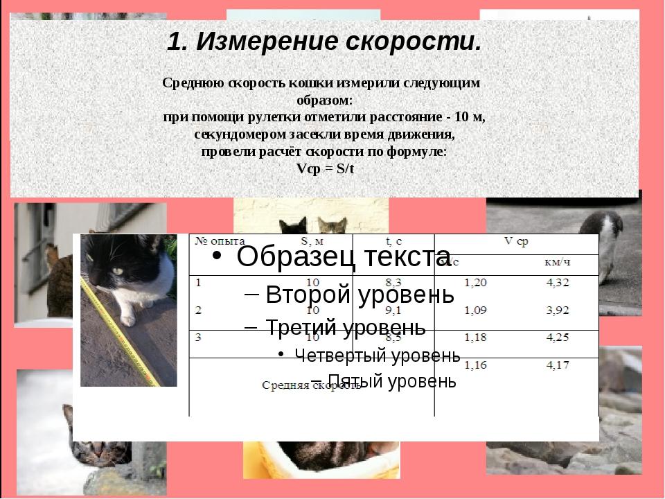 1. Измерение скорости. Среднюю скорость кошки измерили следующим образом: при...