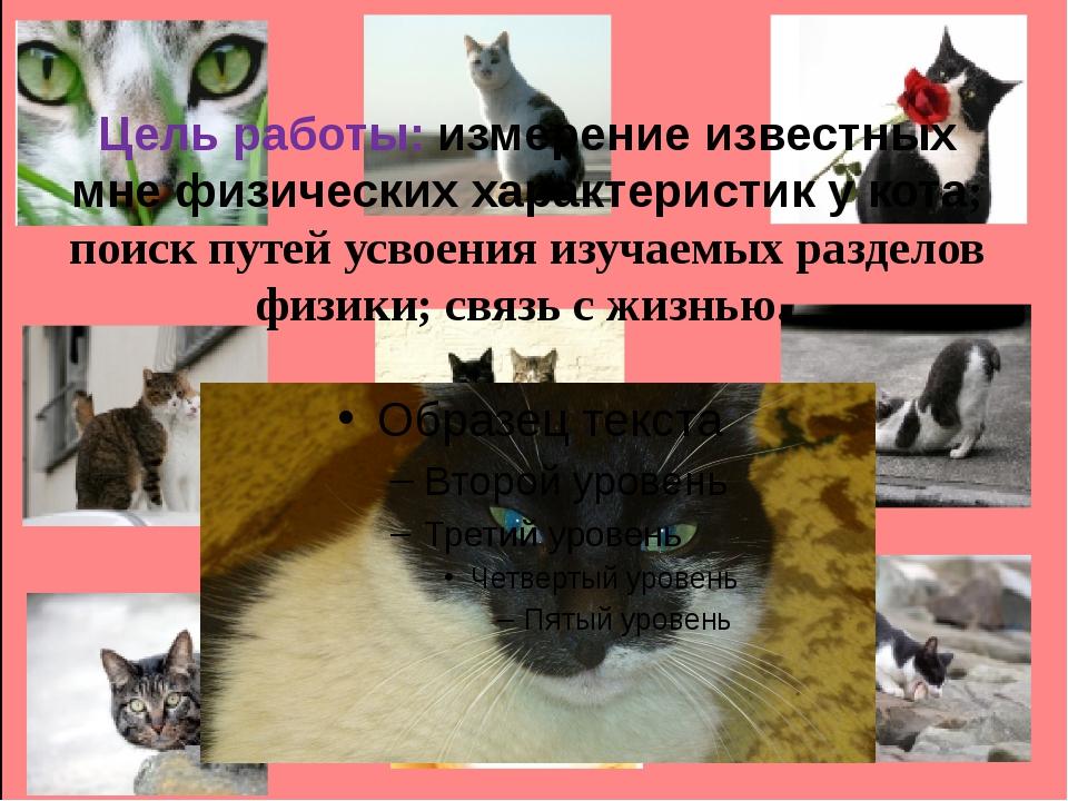 Цель работы: измерение известных мне физических характеристик у кота; поиск п...