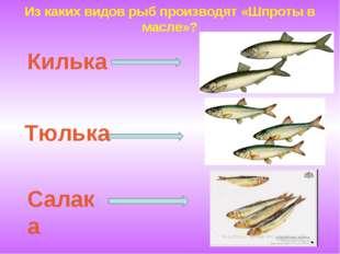 Из каких видов рыб производят «Шпроты в масле»? Килька Тюлька Салака