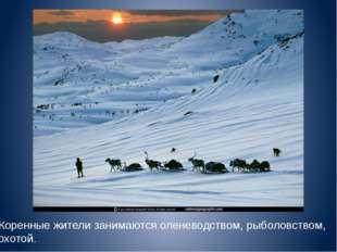 Коренные жители занимаются оленеводством, рыболовством, охотой..