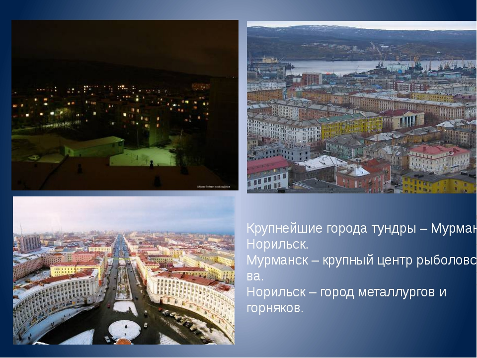 Крупнейшие города тундры – Мурманск, Норильск. Мурманск – крупный центр рыбол...