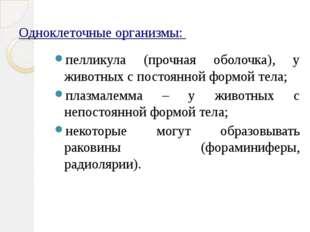 Одноклеточные организмы: пелликула (прочная оболочка), у животных с постоянно
