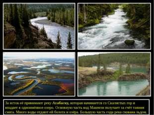 За исток её принимают рекуАтабаску, которая начинается со Скалистых гор и в