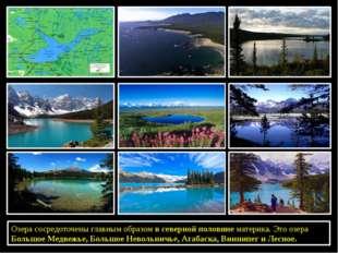Озера сосредоточены главным образомв северной половинематерика. Это озера