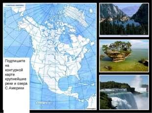 Подпишите на контурной карте крупнейшие реки и озера С.Америки