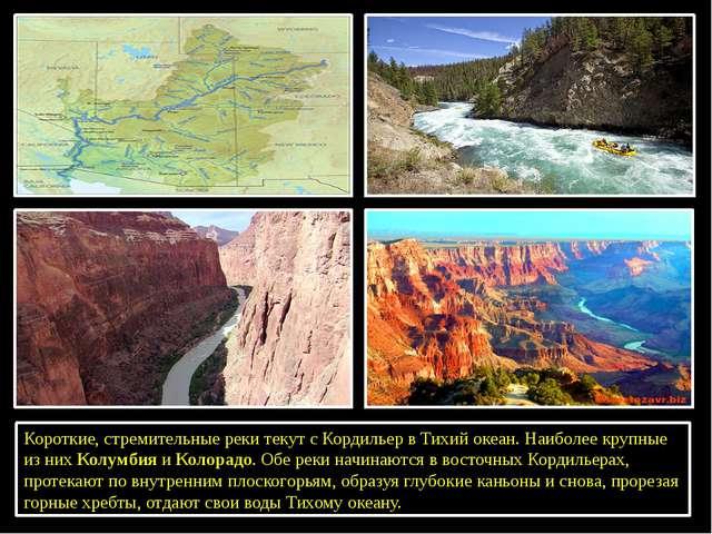 Короткие, стремительные реки текут с Кордильер в Тихий океан. Наиболее крупн...