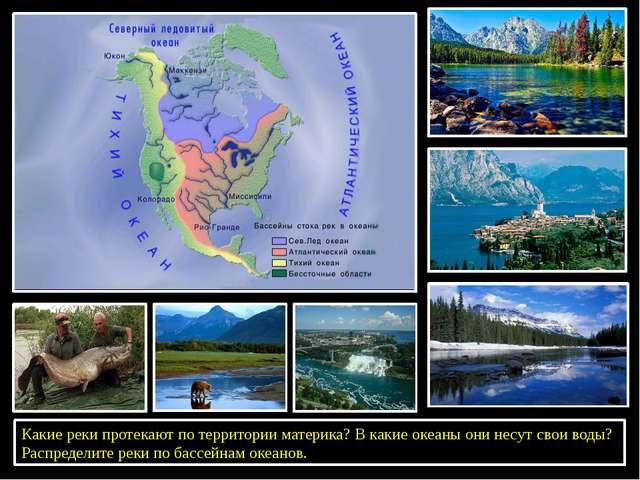 Какие реки протекают по территории материка? В какие океаны они несут свои в...