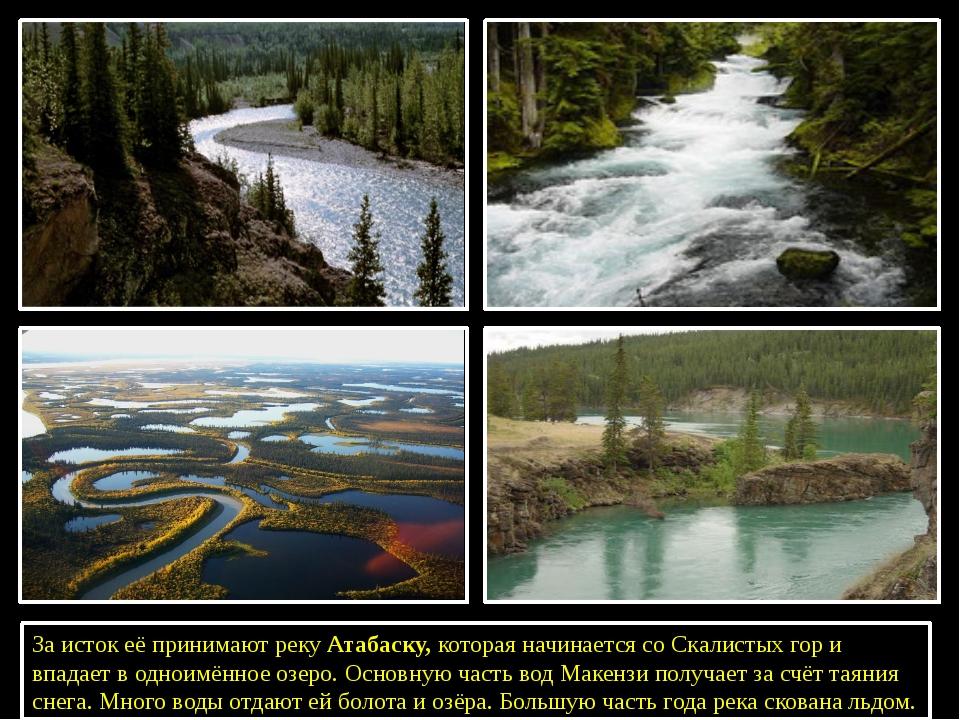 За исток её принимают рекуАтабаску, которая начинается со Скалистых гор и в...