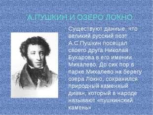Существуют данные, что великий русский поэт А.С.Пушкин посещал своего друга Н