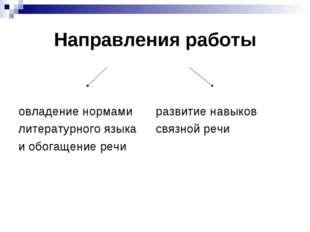 Направления работы овладение нормамиразвитие навыков литературного языкас