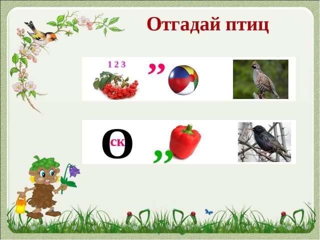 Отгадай птиц 1 2 3 ,, О ск ,,