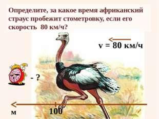 Определите, за какое время африканский страус пробежит стометровку, если его