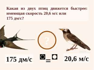 ? 20,6 м/с 175 дм/с Какая из двух птиц движется быстрее: имеющая скорость 20,