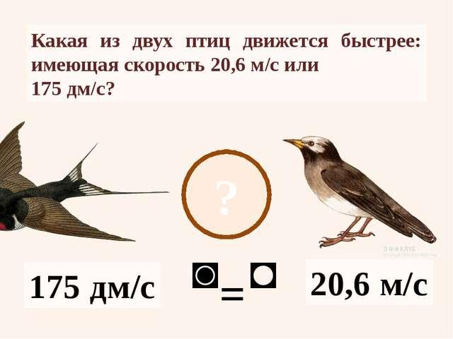 ? 20,6 м/с 175 дм/с Какая из двух птиц движется быстрее: имеющая скорость 20,...