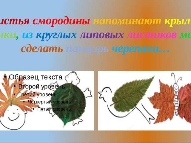 Листья смородины напоминают крылья бабочки, из круглых липовых листиков можно...