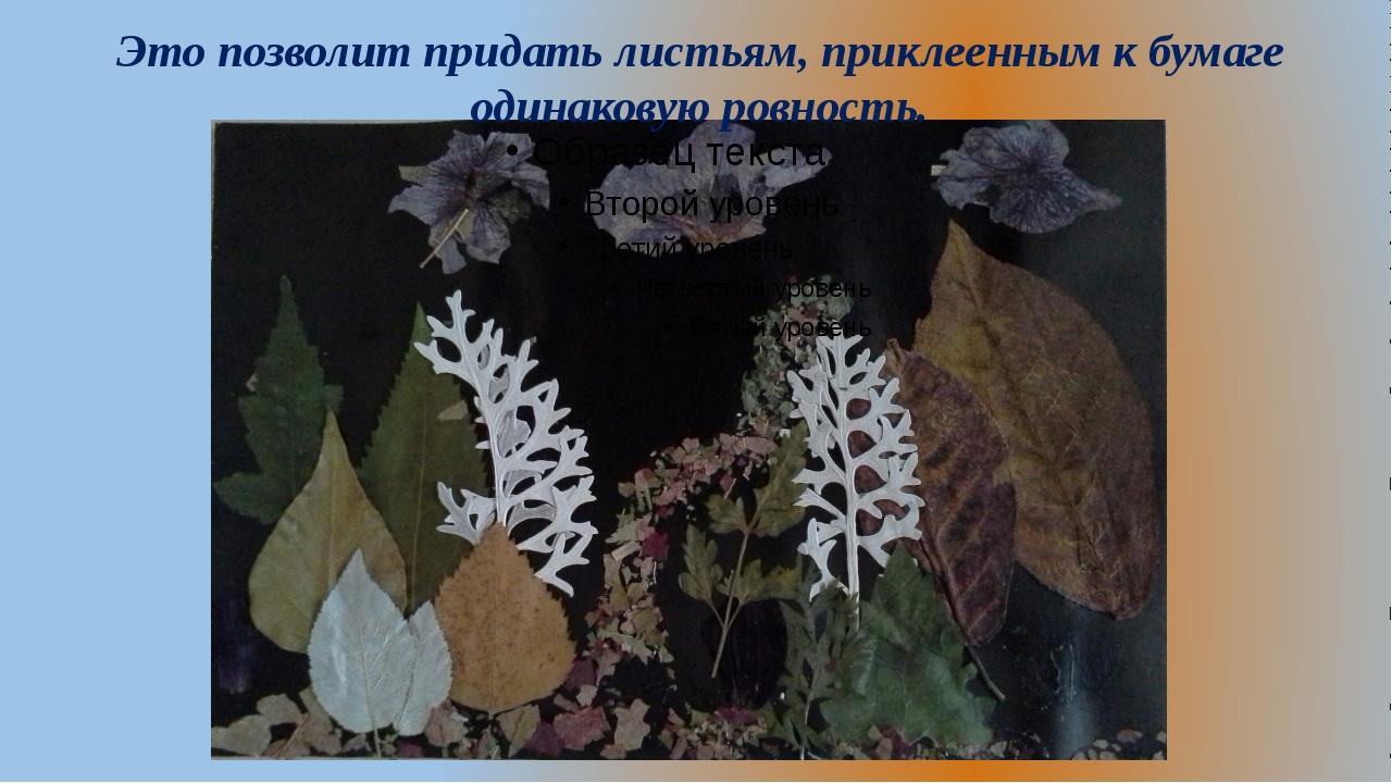 Это позволит придать листьям, приклеенным к бумаге одинаковую ровность.