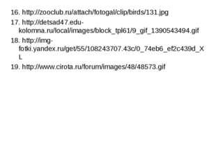 16. http://zooclub.ru/attach/fotogal/clip/birds/131.jpg 17. http://detsad47.e