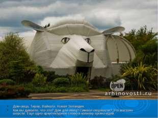 Дом-овца, Тирау, Вайкато, Новая Зеландия. Как вы думаете, что это? Дом для ов
