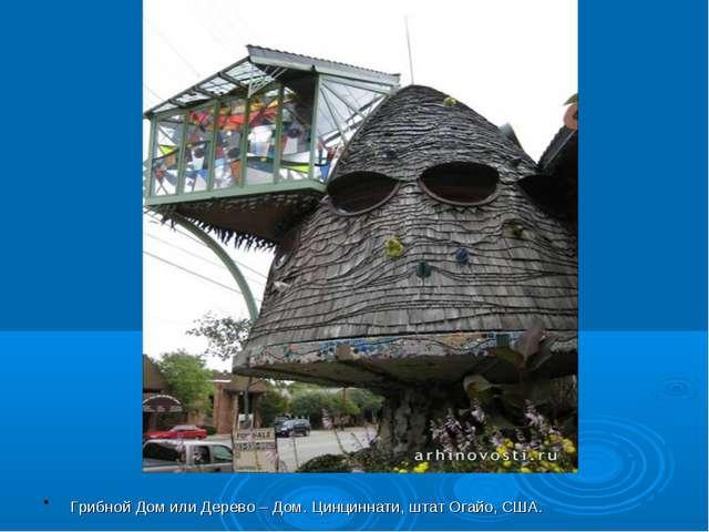 Грибной Дом или Дерево – Дом. Цинциннати, штат Огайо, США.