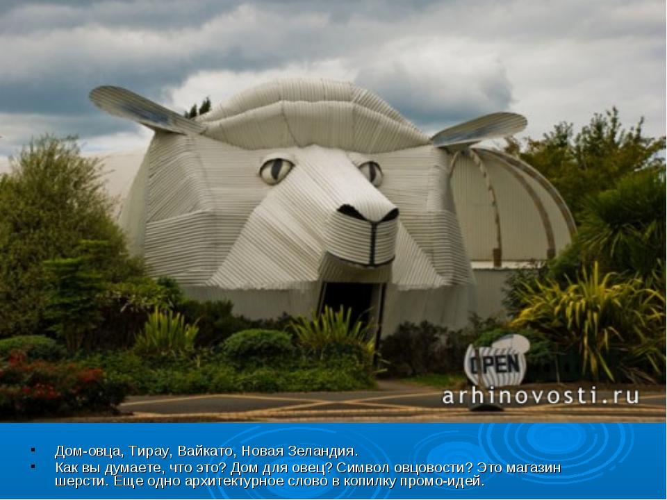 Дом-овца, Тирау, Вайкато, Новая Зеландия. Как вы думаете, что это? Дом для ов...