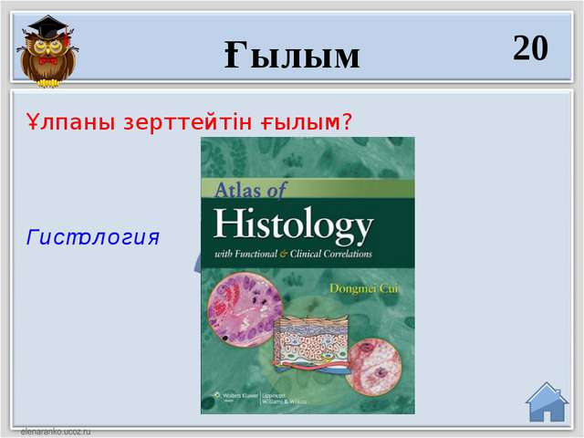 Гистология Ұлпаны зерттейтін ғылым? Ғылым 20