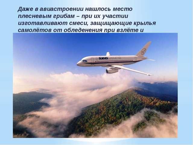 Даже в авиастроении нашлось место плесневым грибам – при их участии изготавли...