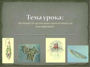«Особенности организации одноклеточных ,их классификация»