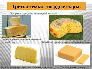 Третья семья- твёрдые сыры. Это зрелые сыры, самый популярный вид сыра. Парме