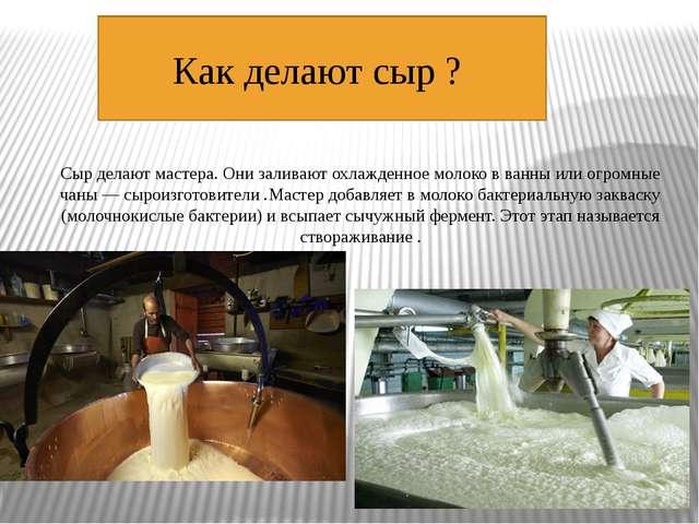 Как делают сыр ? Сыр делают мастера. Они заливаютохлажденноемолоко в ванны...