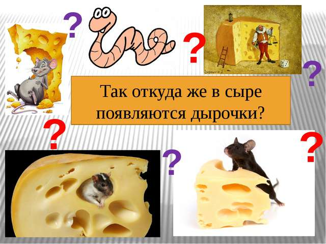 Так откуда же в сыре появляются дырочки? ? ? ? ? ? ?