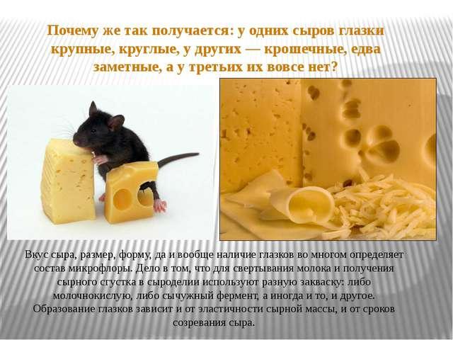 Вкус сыра, размер, форму, да и вообще наличие глазков во многом определяет со...