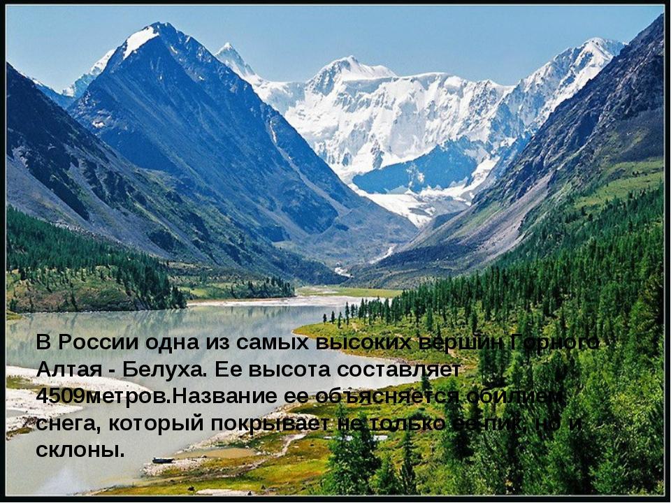 В России одна из самых высоких вершин Горного Алтая - Белуха. Ее высота соста...