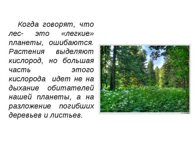 Когда говорят, что лес- это «легкие» планеты, ошибаются. Растения выделяют к...