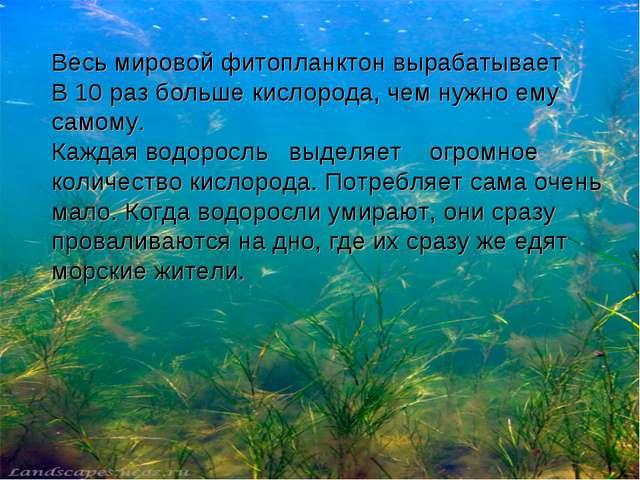 Весь мировой фитопланктон вырабатывает В 10 раз больше кислорода, чем нужно е...