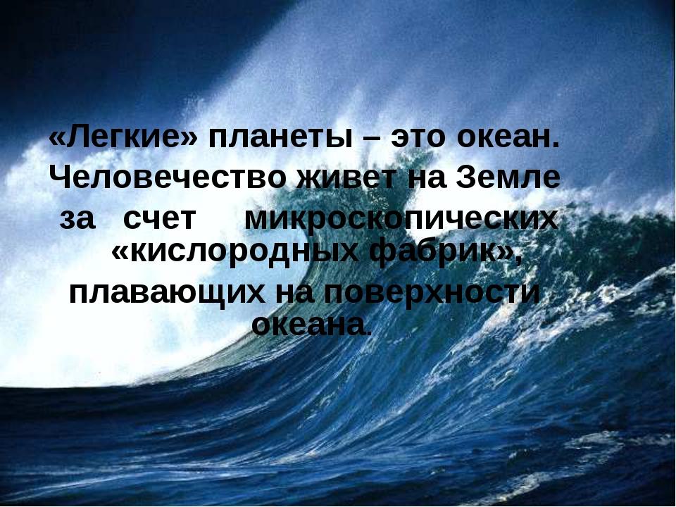 «Легкие» планеты – это океан. Человечество живет на Земле за счет микроскопич...