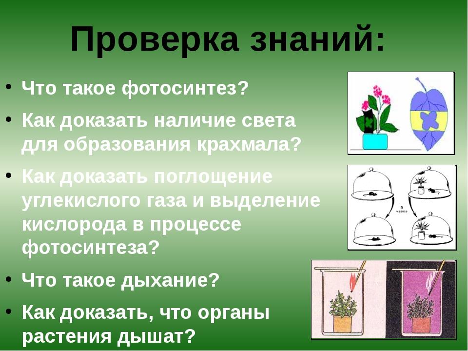 Что такое фотосинтез? Как доказать наличие света для образования крахмала? К...