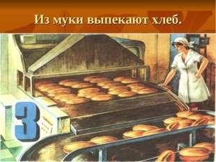 Из муки выпекают хлеб.