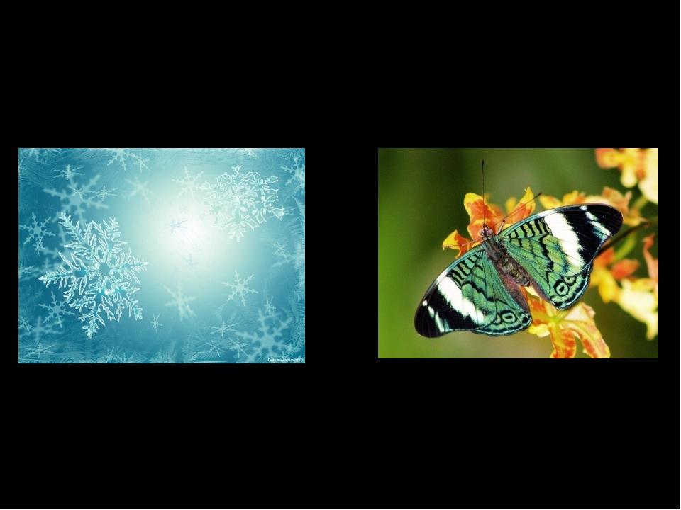 В современном мире мы мало замечаем симметрию, хотя сталкиваемся с ней ежедне...