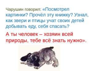 Чарушин говорил: «Посмотрел картинки? Прочёл эту книжку? Узнал, как звери и