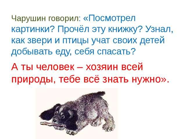 Чарушин говорил: «Посмотрел картинки? Прочёл эту книжку? Узнал, как звери и...