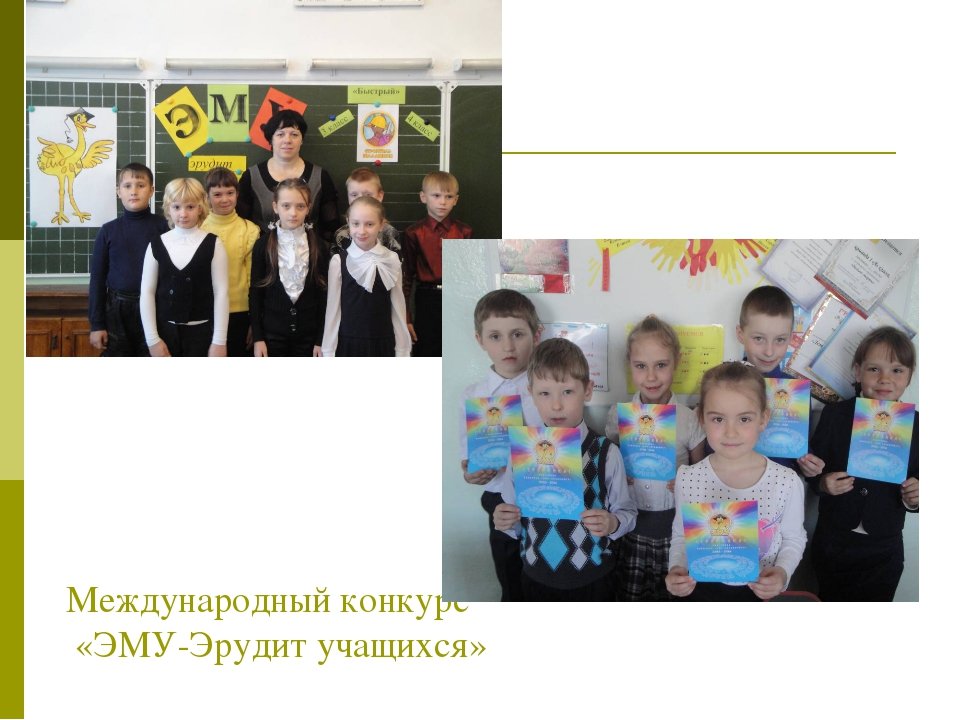 Международный конкурс «ЭМУ-Эрудит учащихся»