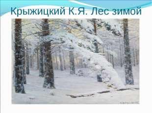 Крыжицкий К.Я. Лес зимой
