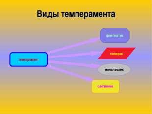 Виды темперамента темперамент флегматик меланхолик холерик сангвиник