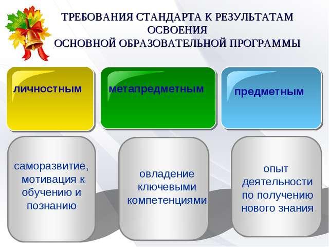 ТРЕБОВАНИЯ СТАНДАРТА К РЕЗУЛЬТАТАМ ОСВОЕНИЯ ОСНОВНОЙ ОБРАЗОВАТЕЛЬНОЙ ПРОГРАММ...