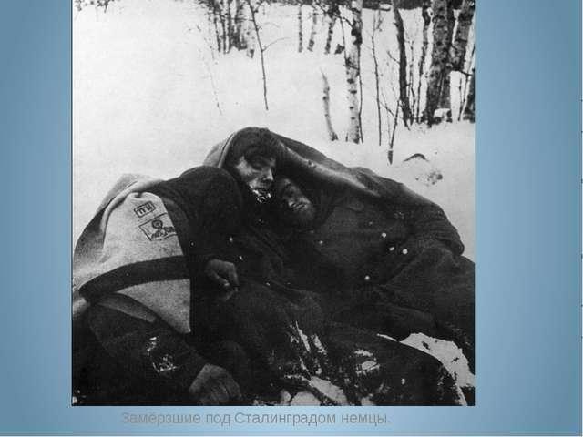 Замёрзшие под Сталинградом немцы.