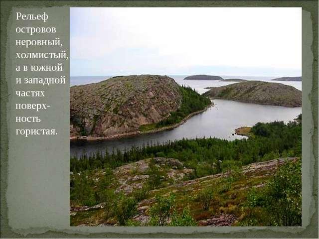 Рельеф островов неровный, холмистый, а в южной и западной частях поверх-ность...