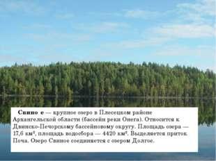 Свино́е — крупное озеро в Плесецком районе Архангельской области (бассейн ре
